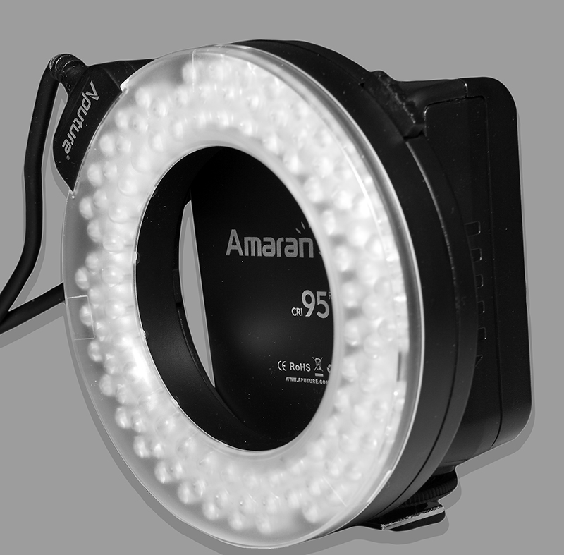 makro ring led leuchte nikon 100 leds cri 95 aputure ahl hc100 8x adapterring. Black Bedroom Furniture Sets. Home Design Ideas